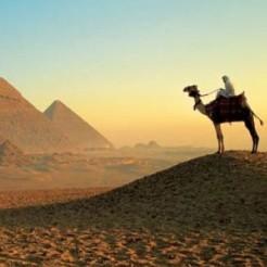 Шинный рынок Египта увеличится до 1 млрд $ к 2020 году