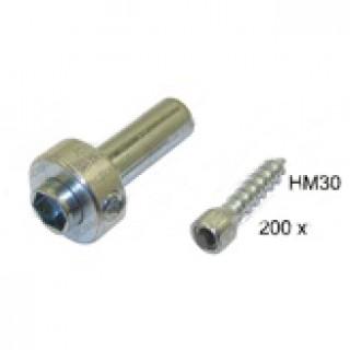 Шипы HM30 30х200